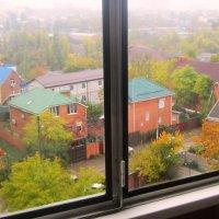 За окнами осень и дождливая погода :: татьяна