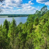 Можжевеловый парк под Каунасом, Литва :: Vsevolod Boicenka