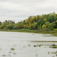 Осенняя Западная Двина :: Алеся Пушнякова