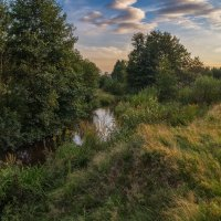 Река Дрезна август 2016 :: Андрей Дворников