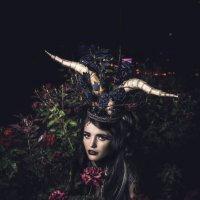 wild rose :: Денис Карманов