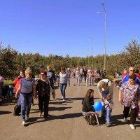 Бердчане идут на праздник. :: Мила Бовкун