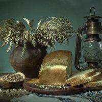 Пшеничный :: Ольга Дядченко
