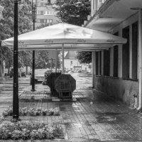 Дождь :: shvlad