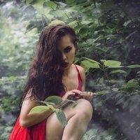 passion in red :: Юлиана Коршунова