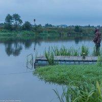 Утренняя рыбалка. :: Виктор Евстратов
