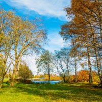 На берегу озера Разлив 5 :: Виталий