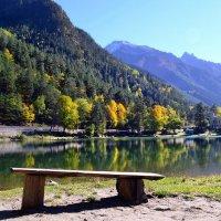 Скамейка у озера :: Клара