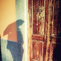 Солнечный дождь :: Margarita Smirnova