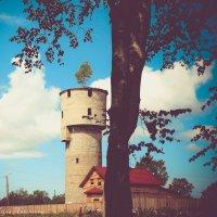 Старая водонапорная башня! :: Ирина Антоновна
