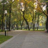Осень в Краснодаре. :: Валерия Калашникова