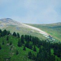 Лысая  гора :: Николай Танаев