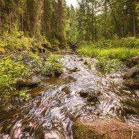 Северные реки :: Артем