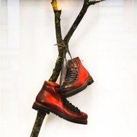 Модные ботинки :: Eugen Pracht