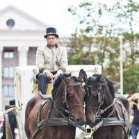 День города Минска Любовь лошадей ) :: Светлана З