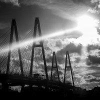Вантовый мост в лучах солнца. :: Светлана Салахетдинова