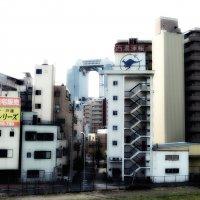 Осака Япония :: Swetlana V