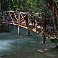 Мостик в низовье водопада Куанг Си :: Евгений Печенин