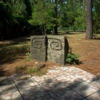 Специфичный памятник :: Андрей Наумов