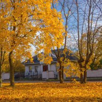 Осень в квартале ИЖС :: Виталий