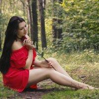 Хрупкая роза :: Kristi Caty