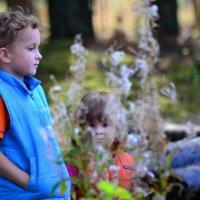 прогулка в лесу) :: Светлана Пантелеева