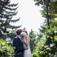 Свадьба :: Евгений Даренский