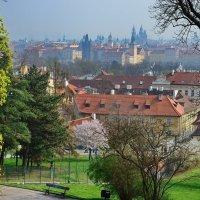 Прага, вид с Петршина :: Владимир Брагилевский