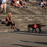 Празднование 70-летия NRW, Дама с собакой :: Witalij Loewin