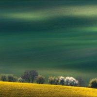 Весна в Южной Чехии. :: Влад Соколовский