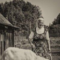 Бабушка :: Олег Секержицкий