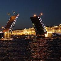 Дворцовый мост. Питер. Белые ночи :: Наталья