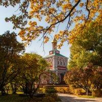 Золотая осень в Новодевичьем :: Alexander Petrukhin