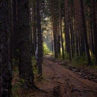 Белорецк. гора Малиновая :: Антон Журавлев