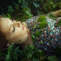 Из серии сны наяву :: Анна Булгакова