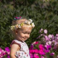Собирательница цветов :: Татьяна Грищук