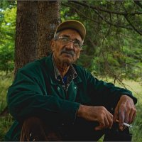 Старик и лес :: Jiří Valiska