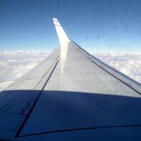 Под крылом самолета о чем-то поет... Германия! :: Александр Скамо