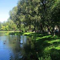 На озере :: Елена Семигина
