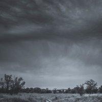 буря :: Алина Гриб