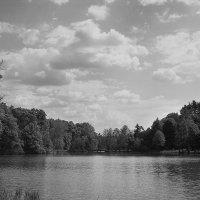 Большой пруд. :: Андрий Майковский