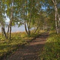Тропинка в осень :: Анатолий Иргл