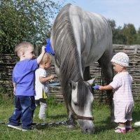 Детки с уэльским пони :: Ольга Слободянюк