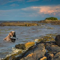 Белое море :: Валентин Кузьмин