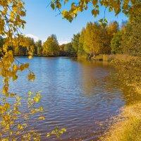 Золотая осень в парке :: Виталий