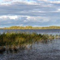На озере Сайма :: Valeriy(Валерий) Сергиенко