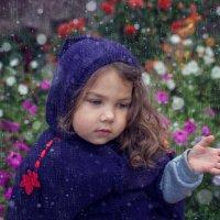 внезапный дождь :: Тася Тыжфотографиня