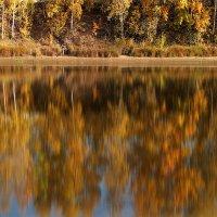 Осенние отражения :: Николай Белавин