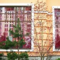 Отражение в окнах :: татьяна