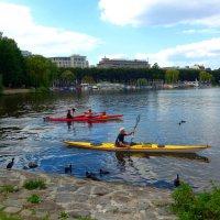 На озере Альстер (серия) Гребцы на каноэ :: Nina Yudicheva